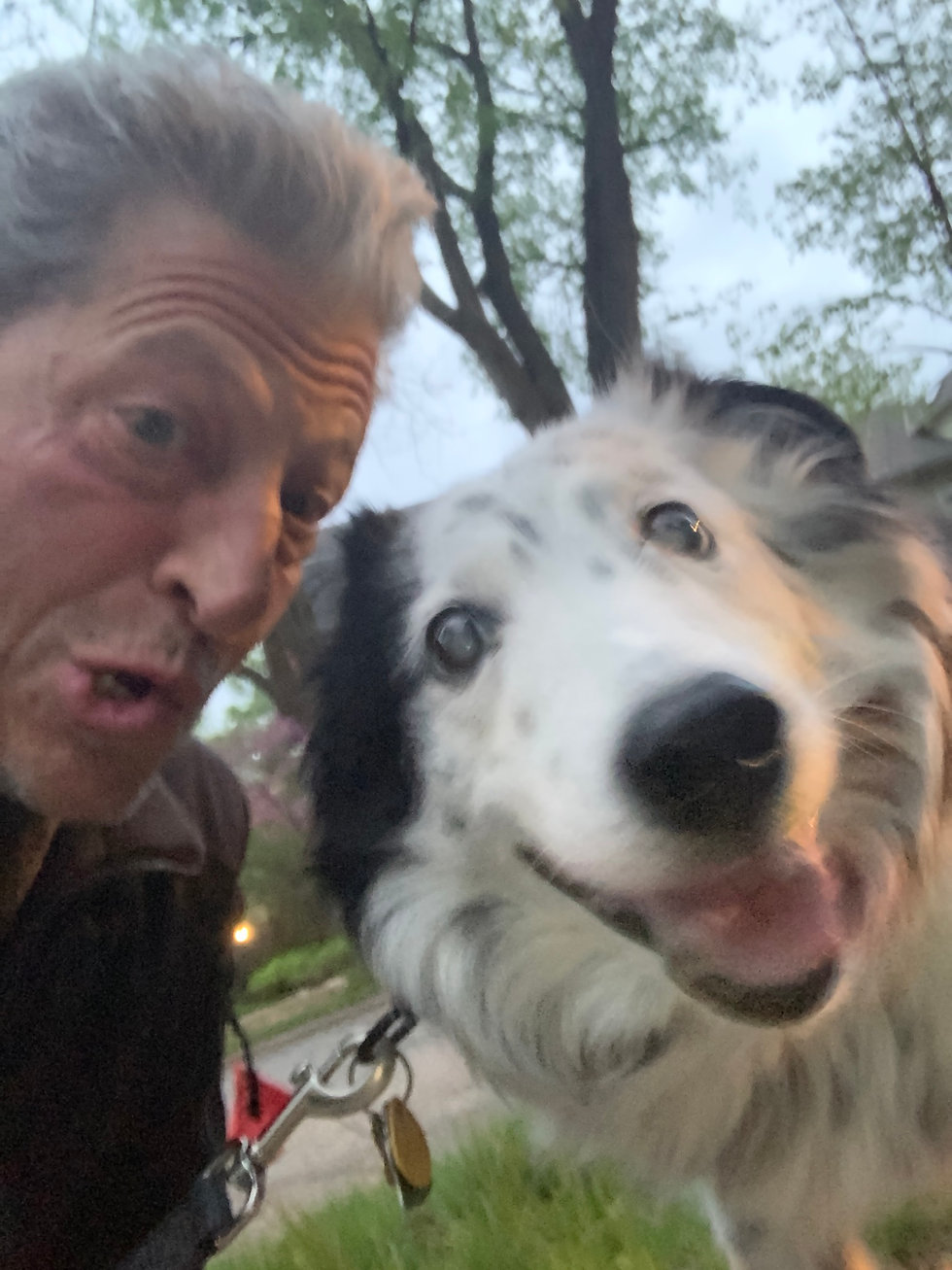 Face of man with grey hair and white dog face with black spots looking down at camera
