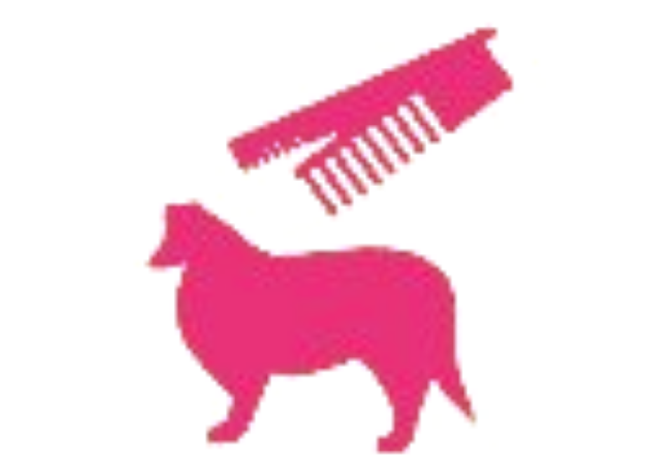 icon of pimk collie dog with comb and brush