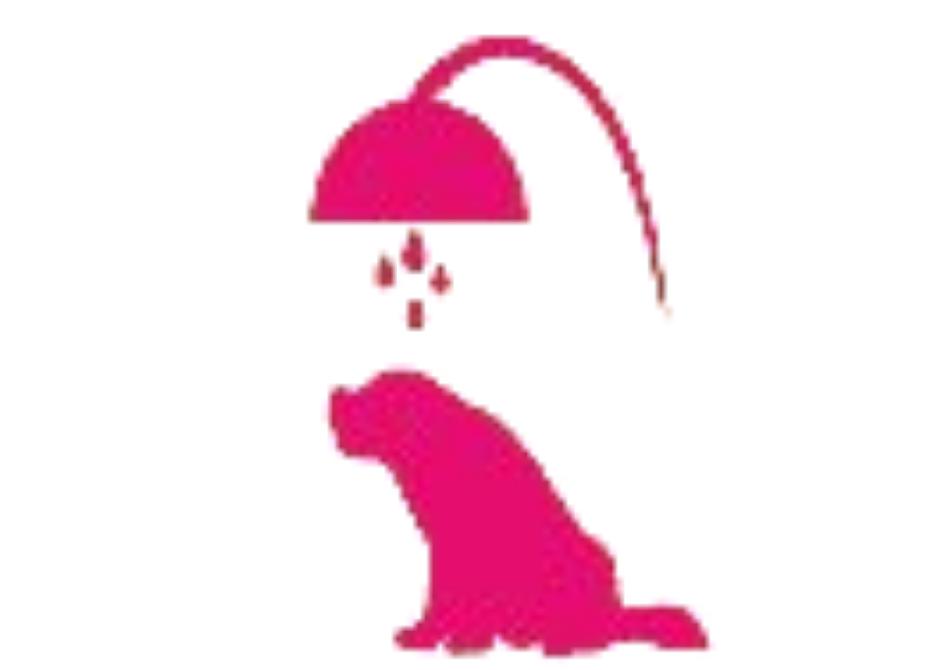 icon of pink dog under shower head getting bath
