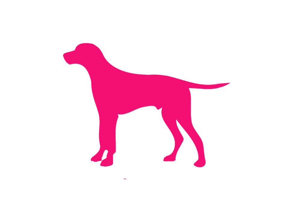 pink icon of lab dog