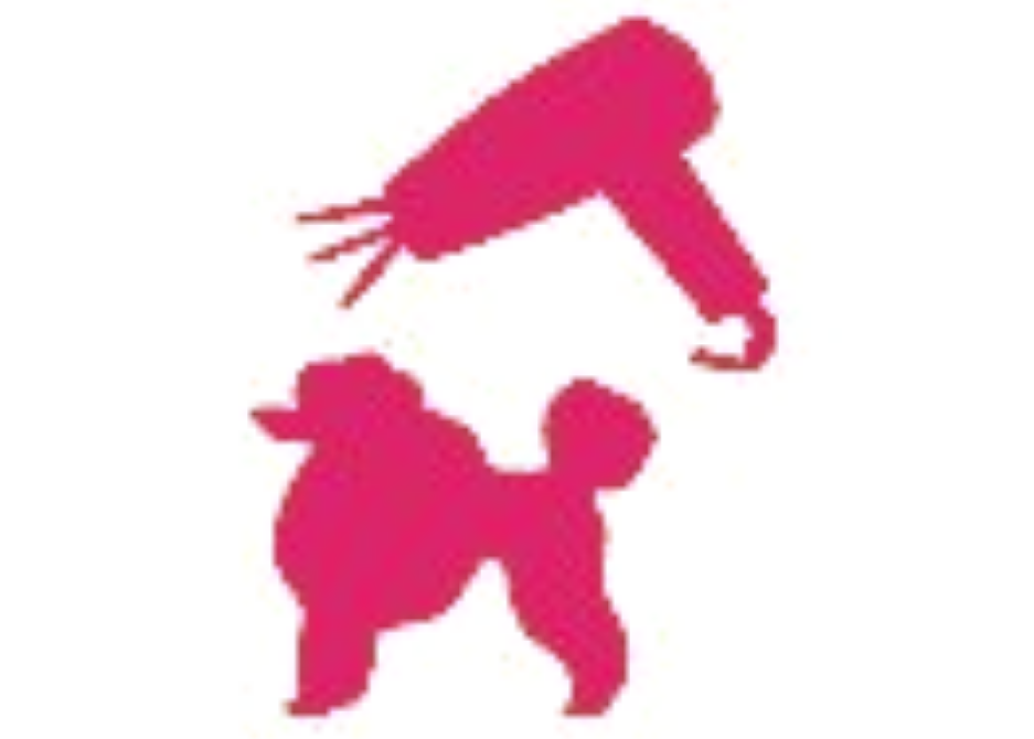 pink icon of poodle with hair dryer