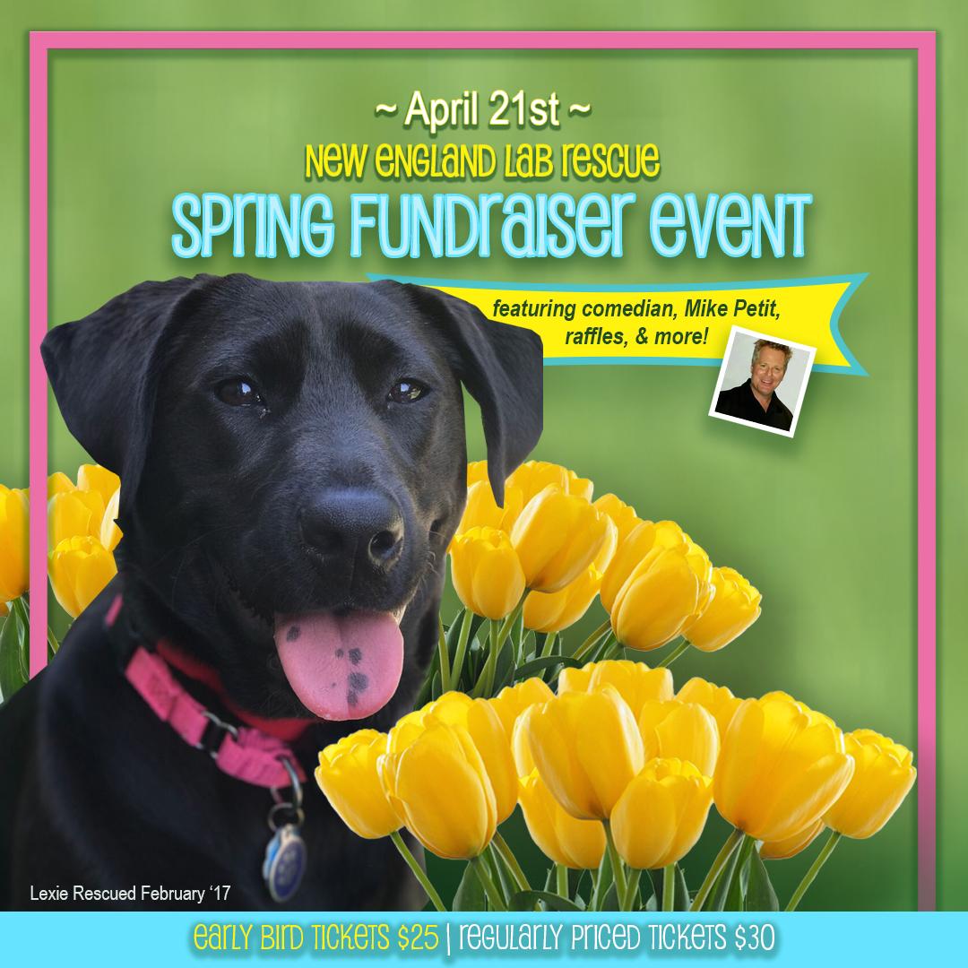 Spring Fundraiser Ad