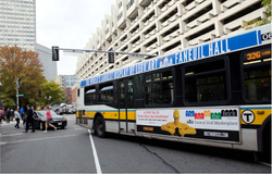 The Art of the Bus MBTA Designs