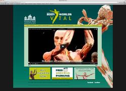 Body Worlds Vital Website
