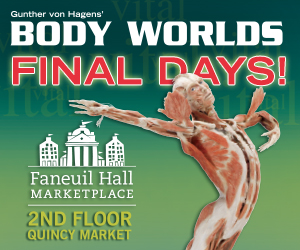 Body Worlds Vital Digital
