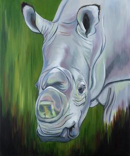 'SUDAN: The Last Male Northern White Rhinocerous'