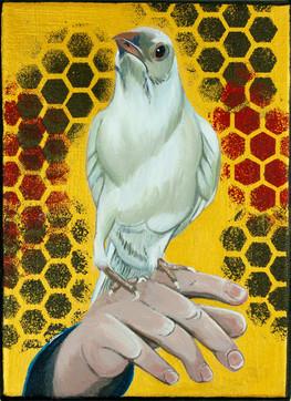 'White Crow'
