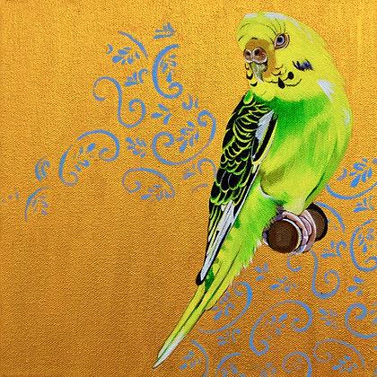 'Parakeet'