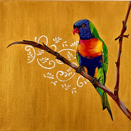'Rainbow Lorikeet'