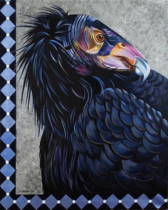 'California Condor'
