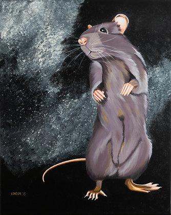 'Common House Rat'