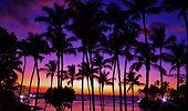 dreamstime_xxl_54780228.jpg