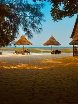 brown-beach-huts-on-seashore-2949825