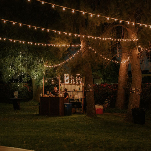 """BAR MARQUEE LIGHTS  These beauties were handcraftedout of sheet of metal and frosted bistro lights.  They truly are fun and breathtaking at the same time.   Dimensions: 30"""" x 15.5"""""""