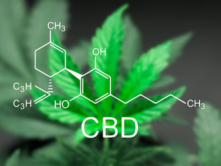 CBD, a miracle or a hoax?
