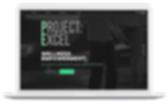 project excel mockup.png