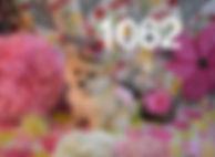 1062%20Fem%20Pom%20(3)_edited.jpg