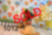 1011%2520(8)_edited_edited.jpg