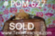 627 puppy pom (5)_edited_edited.jpg