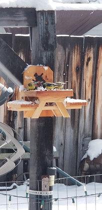 Scott Keogh Squirrel/Bird Feeder - Small