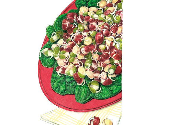 Sprouts Bean Mix Org Seeds - Lg Packet