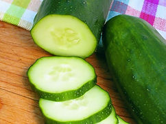 The mildest cucumber on the market, this early variety produces 10-inch long slicing cucumbers that are completely burpless, with no bitterness. Excellent sliced, but also fine for pickling when picked at a slightly smaller size. High yielding. This vining cucumber will appreciate growing up on a trellis.