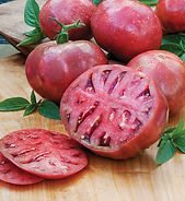 Locally Grown By Sasquatch Farms.  Quincy Heirloom. Cherokee Purple seeds, originating from Tennessee, are thought to have been passed down from Native Americans of the Cherokee tribe. This heirloom tomato variety consistently ranks very high in taste tests. Slice Cherokee Purple tomato for rich, dark color and unmatched sweet, rich taste on sandwiches or in salads. The tomato is a beautiful dusky pink with a deep, rich-red interior