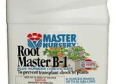 Master Nursery Root Master B-1 Concentrate (1pt)