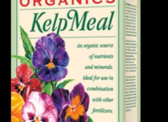 EB Stone Kelp Meal 1-0-1 (3lb box)