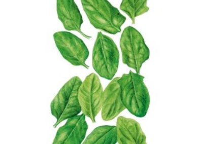 Baby Greens Spinach Seeds