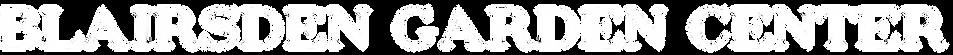 BGC1_logo.001 white.png