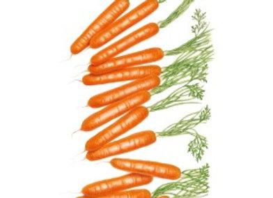 Carrot Little Finger Org Seeds