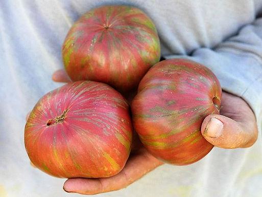 Pink Berkley Tie Die Tomato