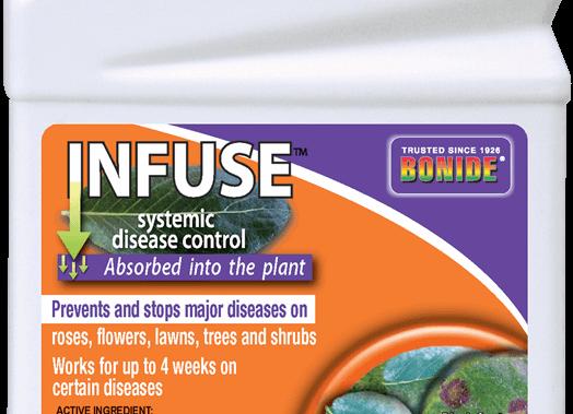 Bonide Infuse Concentrate (1pt)