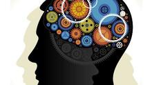 Formation à la Neuro Thérapie Développementale 2015