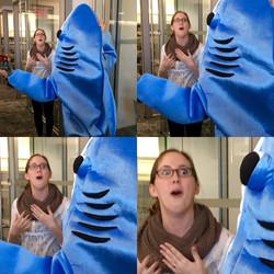 Sharkgram Surprise