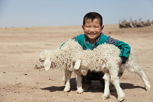 Happy-Chinese-boy-with-his-lambs-outdoor
