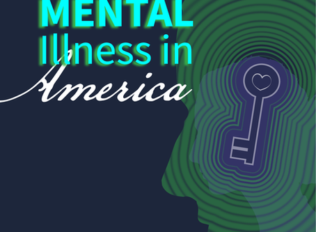 BRAINSTORM: Mental Illness in One American Home - Shivaun Palmer