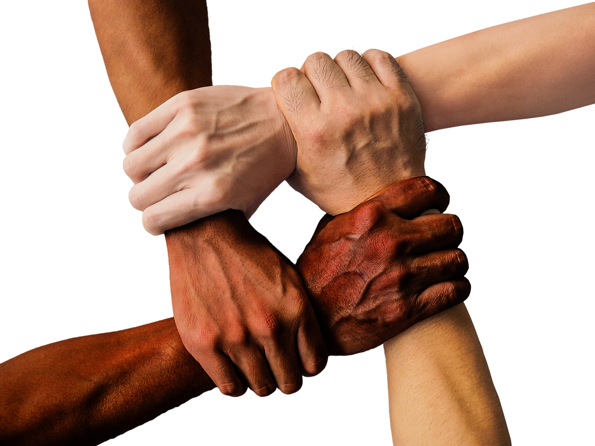 hands joined together symbolizing inclusion
