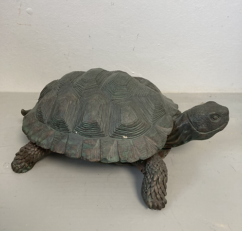 Tortoise 23x18x10cm