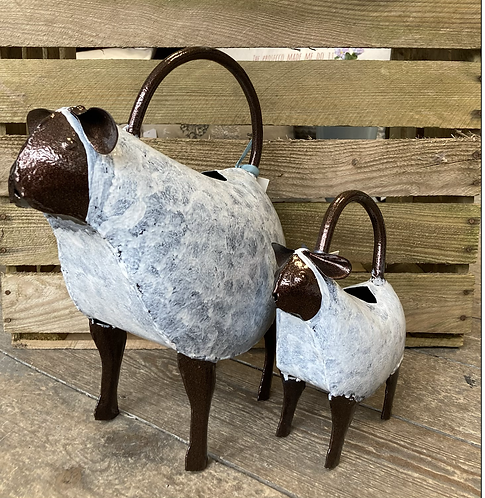 Sheep / Lamb Watering Can £16.99/23.99