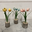 Thumbnail: Metal Tulip 16.5x8cm in 3 colours