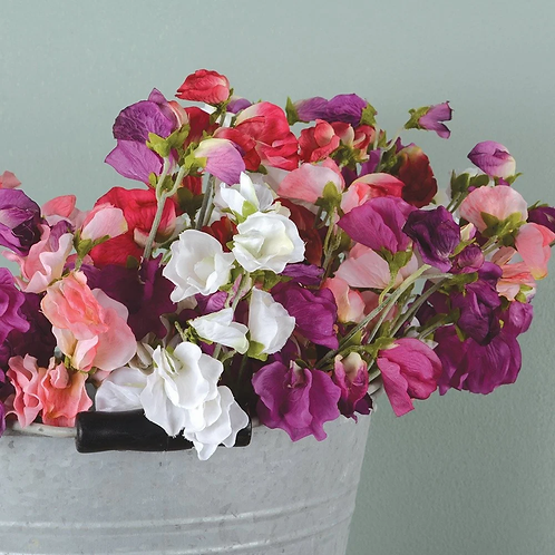 SweetPeas - gorgeous artificial flowers