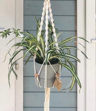 Faux spider plant