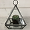 Thumbnail: Small Glass Hanging Terrarium, Candle or cactus holder