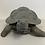 Thumbnail: Tortoise 23x18x10cm