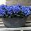 Thumbnail: Hydrangea in pot 30cm, silk flowers
