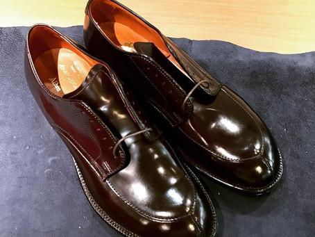 ANATOMICA × Alden のコードバンVチップの靴磨き
