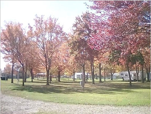 Fall at the campground.JPG