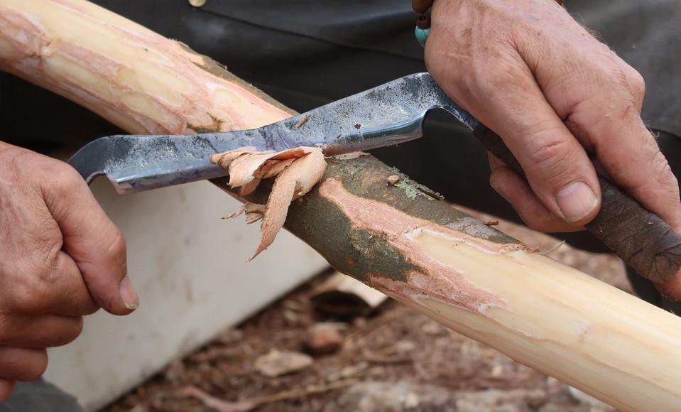 גילוף הקליפה מענף שיהפוך לקשת